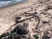 Zaśmiecona plaża po sztormie