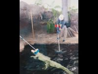 Szorowanie aligatora
